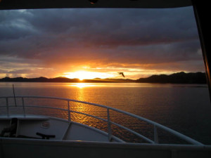 difference between alaska small shipo cruise