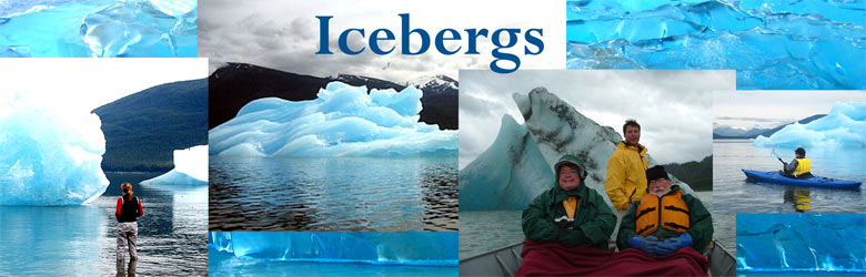 types of icebergs