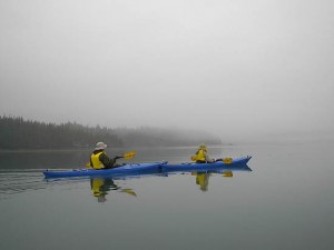alaska cruise kayaking excursions