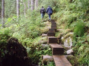 alaska cruise hiking excursions